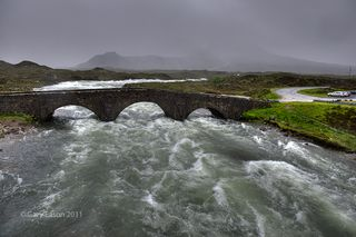 Wet, SKYE _GE04938_39_41_tm